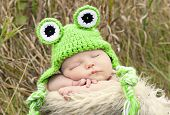 picture of baby frog  - Newborn baby sleeping in a country setting with a frog crochet hat on - JPG