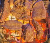 Broiled Grilled On A Grill