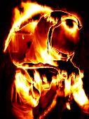 Flaming Astronaut