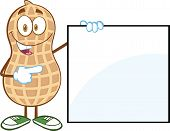 image of ground nut  - Peanut Cartoon Mascot Character Showing A Blank Sign - JPG