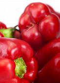 Fresh Red Paprika
