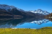 picture of engadine  - Autumn reflections on the lake Silvaplana Switzerland - JPG