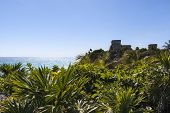 picture of mayan  - Jungle view in Tulum Mexico Mayan ruins on top of the cliff - JPG