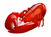 image of crawfish  - Vector crawfish  - JPG