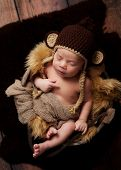 picture of baby-monkey  - A newborn baby boy wearing a crocheted monkey hat and sleeping in an antique wooden well bucket - JPG
