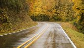 Wet Blacktop Two Lane Highway Curves Through Fall Trees Autumn