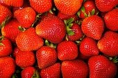 foto of strawberry  - Fresh and Juicy Strawberry Background - JPG