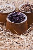 foto of pinto bean  - Close up photo of a beans in clay cup  - JPG