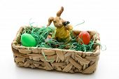Easter bunny with Easter grass