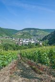 Mayschoss,Ahr Valley,Rhineland-Palatinate,Germany