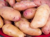 Rose Fingerling Potatoes