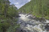 picture of murmansk  - Rapids on the small mountain river in the Murmansk region Russia - JPG