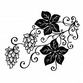 Vector Decorative Bush Hop