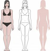 picture of knickers  - Vector illustration of women - JPG