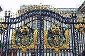Gate At Buckingham Palace.