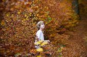 Boy Sitting In An Autumn Park