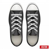 pair of simple sneakers. Realistic Vector Illustration.