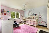 Light Pink And Blue Nursery Room With Crib