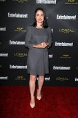 LOS ANGELES - AUG 23:  Laura Fraser at the 2014 Entertainment Weekly Pre-Emmy Party at Fig & Olive on August 23, 2014 in West Hollywood, CA