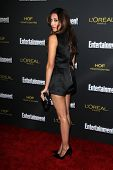 LOS ANGELES - AUG 23:  Noureen DeWulf at the 2014 Entertainment Weekly Pre-Emmy Party at Fig & Olive
