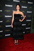LOS ANGELES - AUG 23:  Moran Atias at the 2014 Entertainment Weekly Pre-Emmy Party at Fig & Olive on