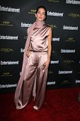 LOS ANGELES - AUG 23:  Dawn Olivieri at the 2014 Entertainment Weekly Pre-Emmy Party at Fig & Olive