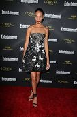 LOS ANGELES - AUG 23:  Joan Smalls at the 2014 Entertainment Weekly Pre-Emmy Party at Fig & Olive on