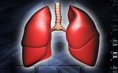picture of exhale  - Digital illustration of human lungs in colour background - JPG
