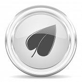 leaf internet icon