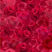 Seamless pattern with realistic red roses