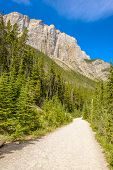 Fragment of Grassi Lakes trail in Banff, Alberta, Canada