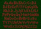 Knitted alphabet, red font on green background