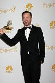 LOS ANGELES - AUG 25:  Aaron Paul at the 2014 Primetime Emmy Awards - Press Room at Nokia Theater at