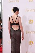 LOS ANGELES - AUG 25:  Julianna Margulies at the 2014 Primetime Emmy Awards - Arrivals at Nokia Thea