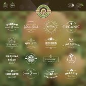 pic of food logo  - Set of vintage style elements for labels and badges for organic food and drink - JPG