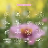 picture of cosmetic products  - Set of vintage style elements for labels and badges for beauty - JPG