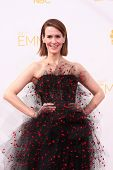 LOS ANGELES - AUG 25:  Sarah Paulson at the 2014 Primetime Emmy Awards - Arrivals at Nokia Theater a