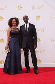 LOS ANGELES - AUG 25:  Don Cheadle at the 2014 Primetime Emmy Awards - Arrivals at Nokia Theater at
