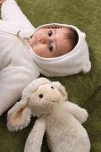 beautiful baby girl with sheep teddy
