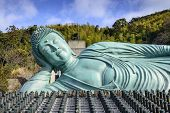 The Reclining Buddha of Nanzoin Temple in Fukuoka, Japan.