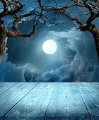 picture of scary haunted  - Halloween Background  - JPG