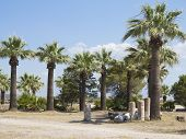 Ruins Of The Ancient Temple Columns, Palm Trees And Blue Sky