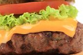 Close up of appetizing cheeseburger. Macro.