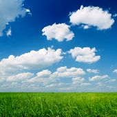 Spring nature scene with beautiful clouds and green grass