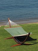 green fabric hammock