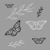 stock photo of monarch  - set Monarch Butterfly with open wings  top view seamless pattern - JPG