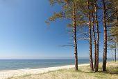 Baltic Shore Scenic