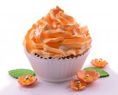 Delicious cupcake isolated on white