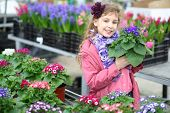 Smiling girl in a pink jacket holding flower pot with cineraria in the greenhouse