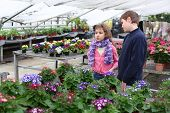 Girl and boy are among the blossoming greenhouse